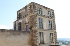 Château - English: Castle of La Tour-d'Aigues (Vaucluse, France).