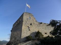 Château (ruines) et rocher qui les porte -  Château des Comtes de Toulouse (Vaison-la-Romaine)