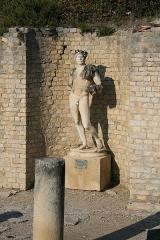 Terrains de fouilles gallo-romaines de la colline du Puymin (ensemble) - Français:   Copie de la statue de l\'empereur Hadrien se situant dans les vestiges gallo-romains à Vaison-la-Romaine. L\'originel est dans le Musée archéologique Théo Desplans.