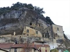Château de Tayac et ses dépendances - Français:   Le château de Tayac, Les Eyzies-de-Tayac-Sireuil, Dordogne, France.