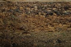 Gisement de Laugerie-Basse - Deutsch: Der Fundplatz Laugerie-Basse bei Les Eyzies-de-Tayac-Sireuil in Frankreich. Am oberen Bildrand Horizont 10, unten Horizont 16. An den mit Ziffern markierten Stellen wurden Knochen entnommen für vergleichende Untersuchungen mit einer Fundstelle in Südwest-Tasmanien.