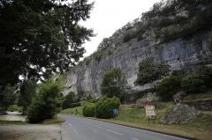 Gisement de Laugerie-Basse - Français:   Abri préhistorique de Laugerie-Basse  aux Eyzies-de-Tayac-Sireuil: le site vu de la RD 47.