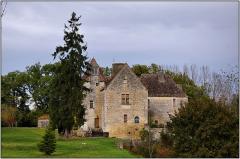Château de Laroque - Français:   Château de Laroque à LANQUAIS