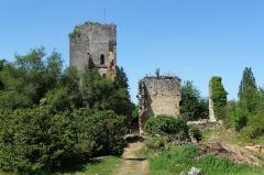 Ruines du château de Miremont - Français:   Château de miremont à Mauzens et Miremont