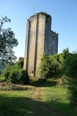 Ruines du château de Miremont - Français:   Mur bouclier protégeant le donjon.