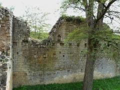 Ruines du château-fort - Français:   L\'angle nord-est des vestiges de l\'enceinte du château fort de Molières, Dordogne, France.