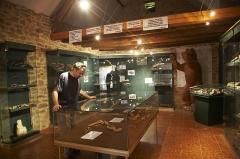 Gisement préhistorique du Régourdou - Français:   Exposition des artefacts trouvés au Régourdou