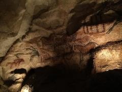 Grotte de Lascaux - Français:   Intérieur de la grotte de Lascaux. Peinture rupestre représentant un groupe de bouquetins et de chevaux.