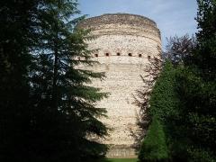 Tour de Vésone -  La Tour de Vésone