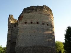 Tour de Vésone -  Perigueux - Temple de Vesone