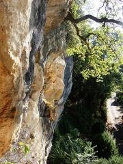 Grotte ornée de gravures prehistoriques, dite aussi Grotte du Sorcier - Français:   Roc de Saint-Cirq (Dordogne, France), avec grotte ornée du Magdalénien dite grotte du Sorcier.