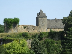 Château de Salignac - English: Castle of Salignac-Eyvigues (Dordogne - France)