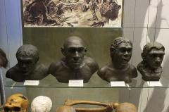 Gisement préhistorique de la Ferrassie - Русский: Экспозиция Дарвиновского музея 5