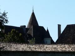 Domaine du Château de Bridoire - Français:   Les toits du château de Bridoire, Ribagnac, Dordogne, France