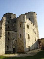Château de Rauzan -  Logis seigneurial de Rauzan et tour d'honneur