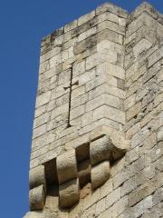 Château de Rauzan -  Archère dans le château de Rauzan