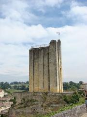 Donjon fortifié, dit Château du Roi -  Donjon du Chateau du Roi, Aquitaine, France