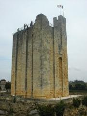 Donjon fortifié, dit Château du Roi -  DSCN0010.JPG