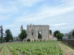 Ancienne église du couvent des Dominicains, dit des Jacobins -  La grande muraille, Saint-Émilion, Aquitaine, France