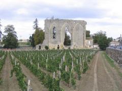 Ancienne église du couvent des Dominicains, dit des Jacobins -  Wars and Vines