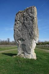 Menhir de Peyrefitte ou de Pierre Fitte - English: Menhir de Peyrefitte (Saint-Sulpice-de-Faleyrens)
