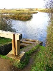 Domaine de Certes -  Bassins et écluse-vanne de l'explitation piscicole du Domaine de Certes - Audenge - Gironde - France  Auteur/author: P.Charpiat 2006