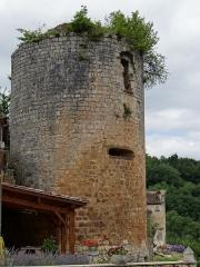 Château de Blanquefort - Français:   Château de Blanquefort-sur-Briolance - Une tour protégeant le côté  est du château