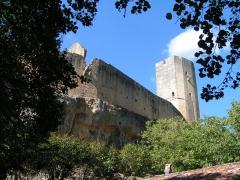 Ancien château - Français:   Château de Gavaudun vue du bas (pers. domaine public)