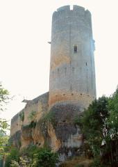 Ancien château - Français:   Gavaudun - Château - Donjon