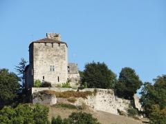 Ruines du château féodal - Français:   Château de Madaillan - Ensemble du côté ouest