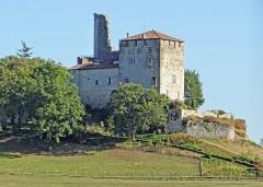 Ruines du château féodal - Français:   Château de Madaillan - Côté nord