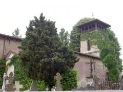 Eglise Saint-Jean-Baptiste -  Photographie de l'église du village français d'Arcangues.