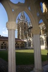 Cathédrale Notre-Dame - Cathédrale Sainte-Marie de Bayonne vue du cloitre