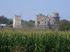 Château de Bidache -  Agramondarren gazteluaren argazkia.