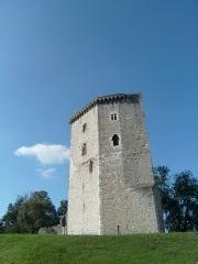 Vestiges du château Moncade - Français:   La Tour Moncade, monument historique du patrimoine municipal Orthezien