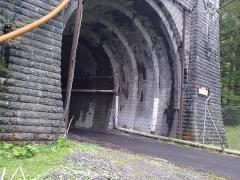 Tunnel de Pau-Canfranc - Français:   Tunnel ferroviaire du Somport, côté français le 16 mai 2010.