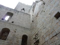 Ruines du château Haut-Andlau -  Au château d'Andlau, près de Barr (67)