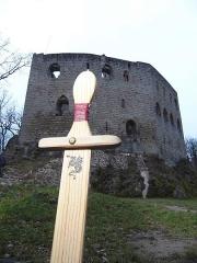 Ruines du château de Spesbourg -  château de Spesbourg