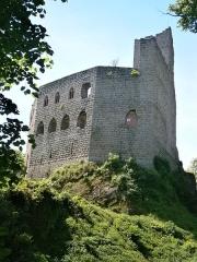 Ruines du château de Spesbourg - English: Spesbourg Castle (Alsace)