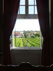Ancien Hôtel Marco - Français:   Vue sur le vignoble depuis le musée de la Folie Marco à Barr (Bas-Rhin)
