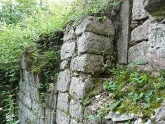 Ruines du château de Schoeneck -  P1080604