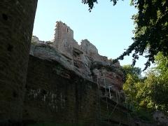 Ruines du château de Schoeneck -  P1080587