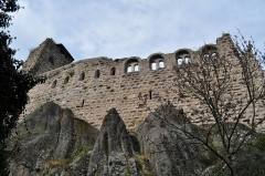 Ruines du château de Bernstein -  Le château du Bernstein