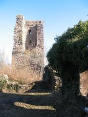 Ruines du château du Grand-Geroldseck -  Château du Grand-Geroldseck IMG_5776