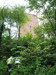 Ruines du château du Grand-Geroldseck -  Tour du Grand-Geroldseck en Alsace.