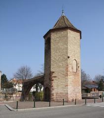 Tour des Pêcheurs - Deutsch: Hagenau