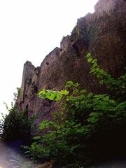 Ruines du château - Deutsch: Burgruine Kintzheim, Außenmauer