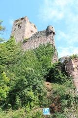 Ruines du château -  Château de Kintzheim, Bas-Rhin, Alsace, France