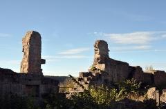 Ruines du château du Frankenbourg -  Château du Frankenbourg