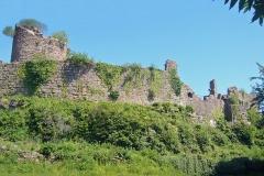 Ruines du château du Frankenbourg -  Frankenbourg 058.JPG